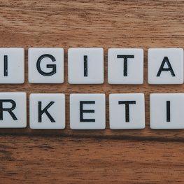 Digital Marketing 263x263 - همه چیز در مورد دیجیتال مارکتینگ